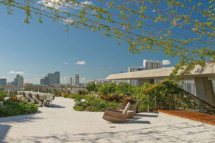 beautiful rooftop garden with city landscaping